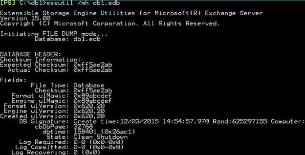 exchange 2010 store exe high disk activity